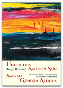 Front cover of Under This Saffron Sun Book